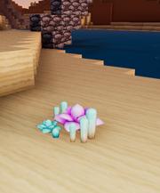 Desert succulent beach