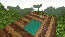 Creativerse Seeds fallow too high up 2017-08-11 21-25-15-81