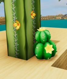 Big pokey cactus dunes