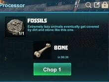 Creativerse fossils to bones 2017-07-05 12-33-21-01
