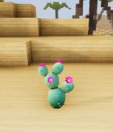 Prickly pal dunes