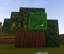 Creativerse Cragwood with flowers1818