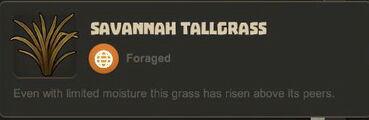 Creativerse Savannah Tallgrass3030