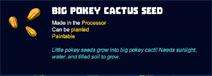 Big pokey cactus seed