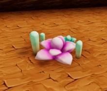 Desert succulent canyon floor