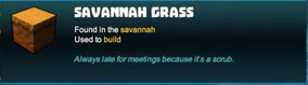 Creativerse savannah grass 2018-09-03 10-20-25-32