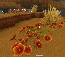 Creativerse Wildflowers Savannah3838