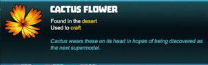 Creativerse cactus flower 2018-04-15 16-07-15-41 tooltip flower