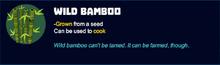 Wild bamboo desc