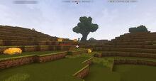 Creativerse Grassland001
