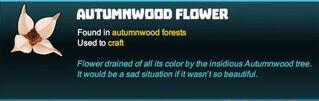 Creativerse autumnwood flower 2018-04-15 16-07-10-85 tooltip flower