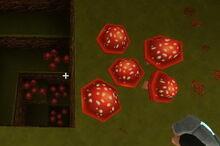 Creativerse red mushrooms138