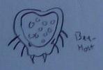 Bee-Host Concept
