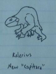 Kelerius New Concept