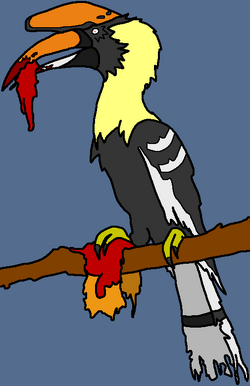Infected Hornbill Z