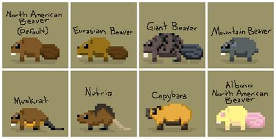 SS Beaver Variants