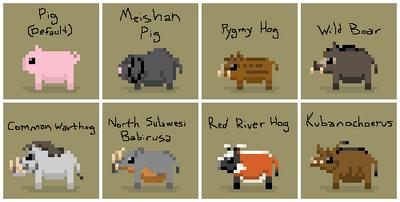 SS Pig Variants