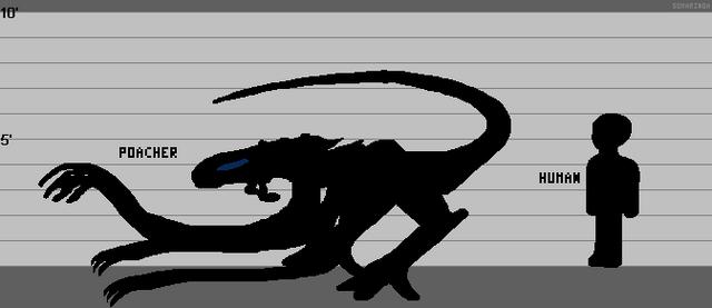 File:Poacher Lineup.png