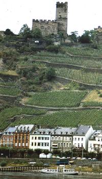 Propinou-Valea Bardului