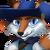 056 FoxDuelist Portrait