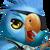 029 ParrotFirstMate Portrait