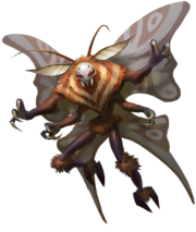 247 Mothboy
