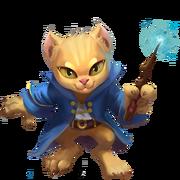 025 KittenApprentice