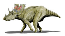 Agujaceratops BW