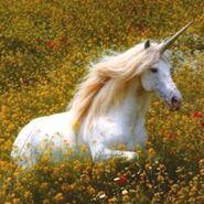 Unicorn4