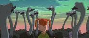 TWT Movie Ostriches