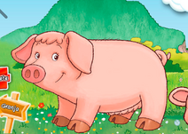 Lucy the Pig