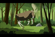 Moose (Wild Kratts)