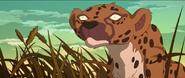 TWT Cheetah