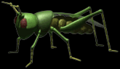 C3grasshopper.png