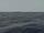 Lust of the Sea