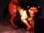Smilledoggggg