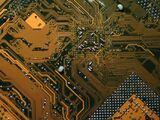 SCP-003: Biologisches Motherboard
