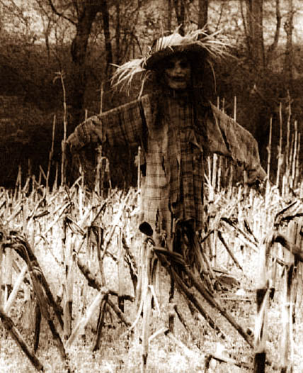Scarecrow17