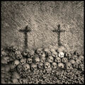 Augusto De Luca - Skull 2.jpg