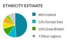 Ancestry-DNA-estimate-pie-chart1