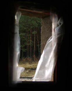 Broken window of refuge