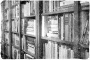 Bookshelfnsh