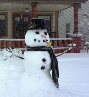 Snowman in Indiana 2014