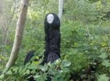The Black Lady of Bradley Woods