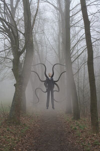 The Slender Man by Cortair