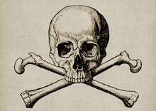 Skull-1515874