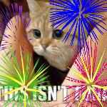 New Years Tuna