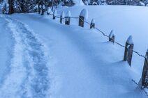 Snow-3113583 1920