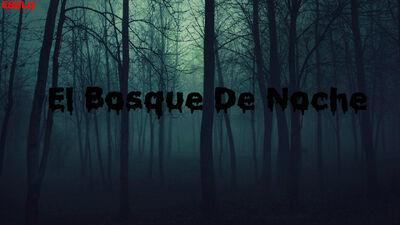 Bosque de noche