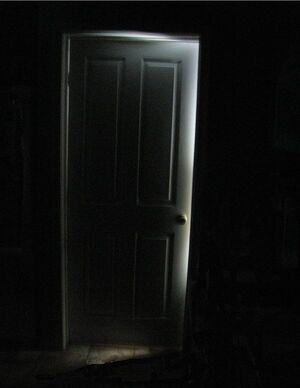 Creepy Door by macgyvering my way